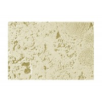 Coral Stone Natural Sample  With Rebate - Free Standard Shipping