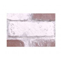 "Faux Reclaimed 28"" Panel Brick Sample - Red-Whitewash - With Rebate - Free Standard Shipping"